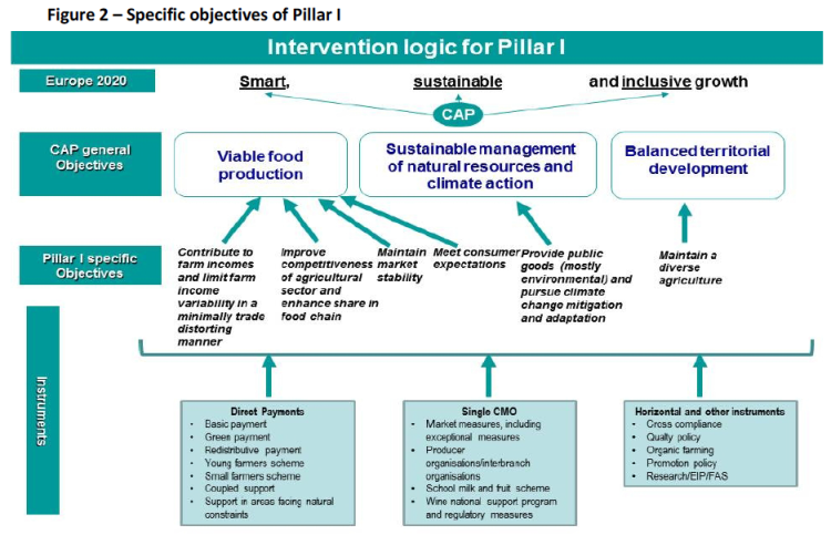 figure-2-e28093-specific-objectives-of-pillar-i.png