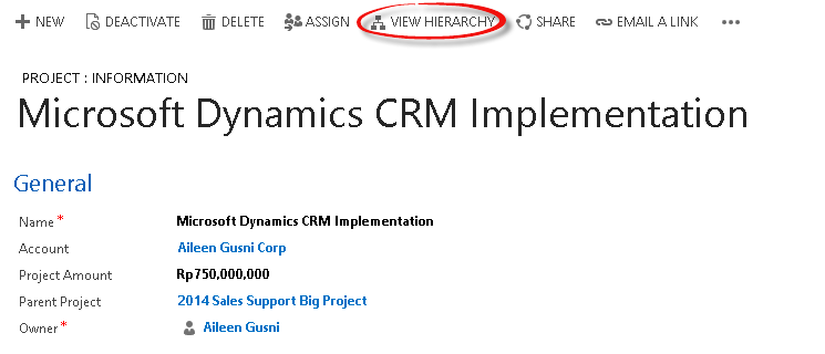Microsoft Dynamic CRM 2015 - Hierarchy Relationship For Custom Entity - 08.png