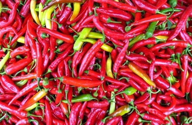 w620h405f1c1-files-articles-2016-1100961-chilies.jpg